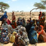 Drought assessment in Somalia
